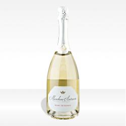 "Franciacorta DOCG ""Tenuta Montenisa"" Blanc de Blancs brut di Marchesi-Antinori vino spumante lombardia vendita online"