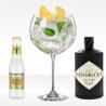 Gin Tonic kit, fever tree acqua tonica e hendrick's gin