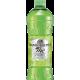 Thè verde con aloe vera e cactus - San Benedetto Formato 0,50
